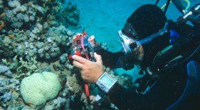 L'appareil photo sous-marine ne supporte pas l'eau !