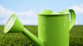 Une nouvelle réglementation pour la vente de  pesticidesaux particuliers