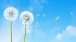 Protégez votre air intérieur, protégez votre santé